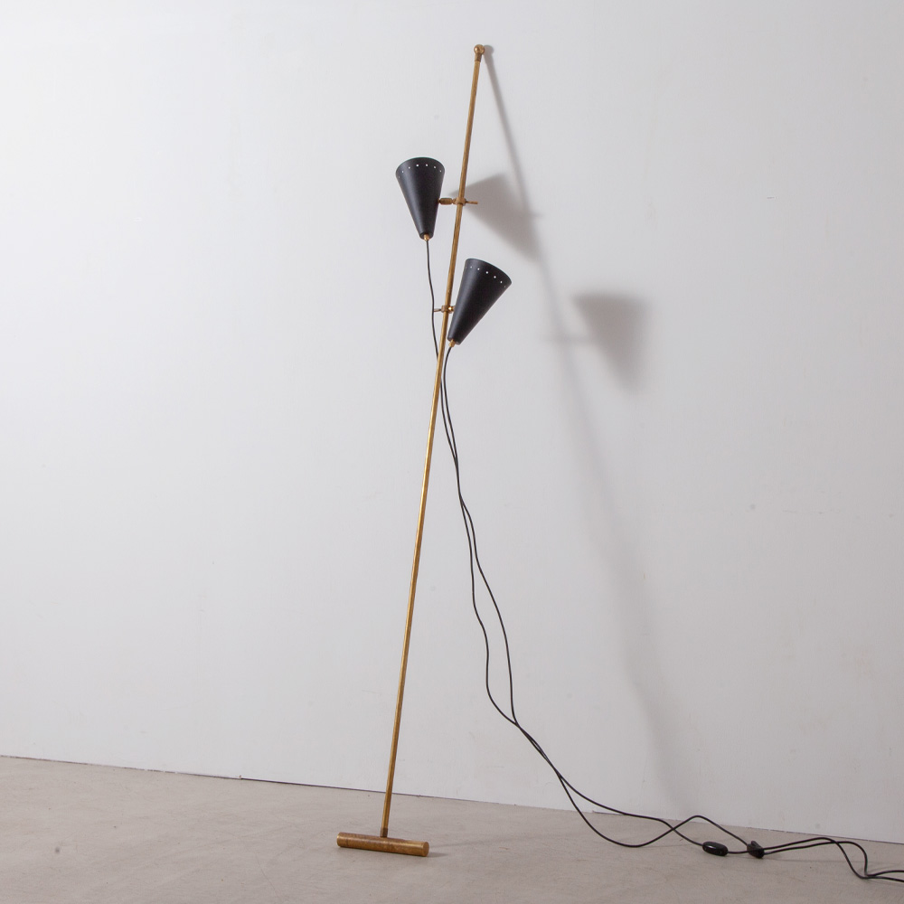 Adjustable Two Shade Floor Lamp in Brass and Black