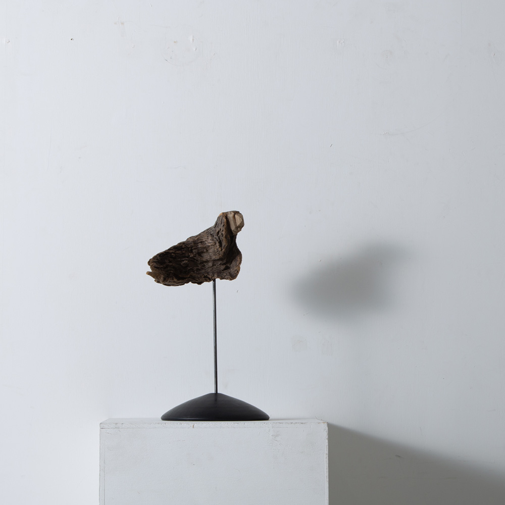 Osamu Miura Collection Page を更新しました。